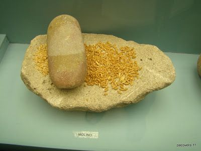 CH´USAY: Museo Arqueológico de Villamartín (Cádiz)
