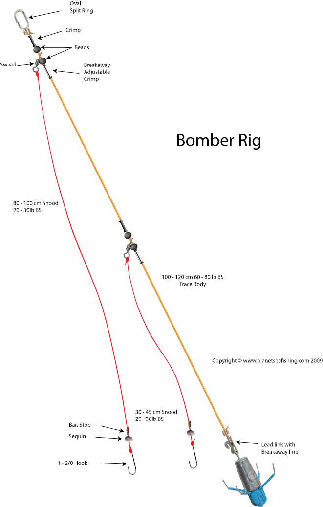 Bomber rig fishing pinterest rigs fish and fishing rigs for Beach fishing rigs