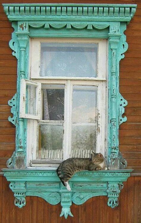 Turquoise window with a cat adorning it