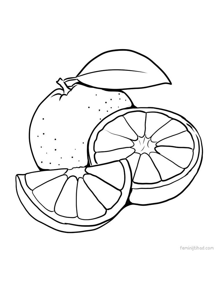 Orange Sheet To Print Fruit Coloring Pages Orange Sheets