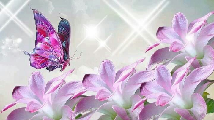 May Your Day Be As Beautiful As You Are Flutterbies For Steffie