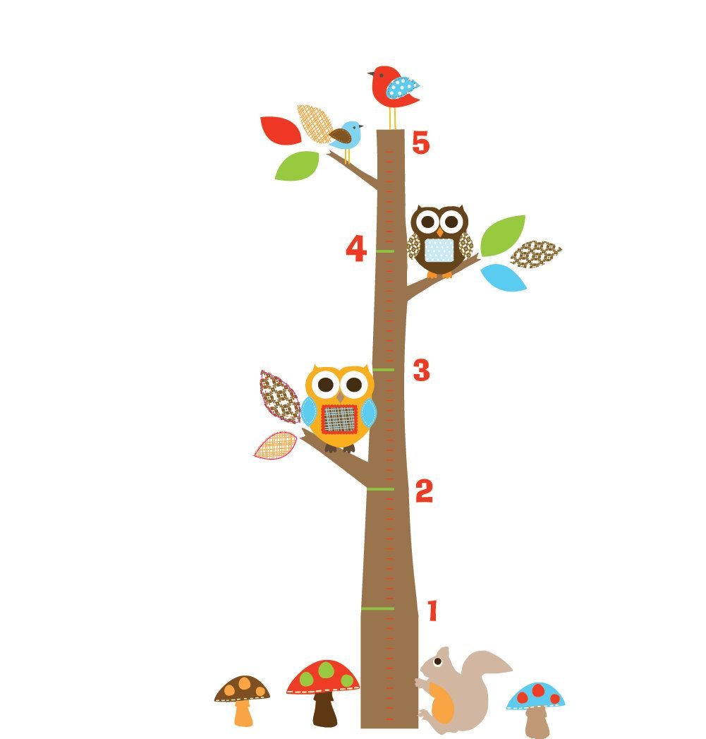 Childrens wall decal vinyl wall decal growth chart with owls and childrens wall decal vinyl wall decal growth chart with owls and birds 4999 via nvjuhfo Choice Image