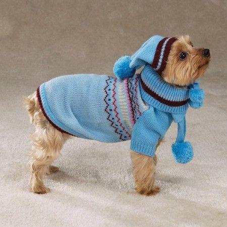 Smalleasycrochetdogsweaterpatterns Crochet Dog Sweater