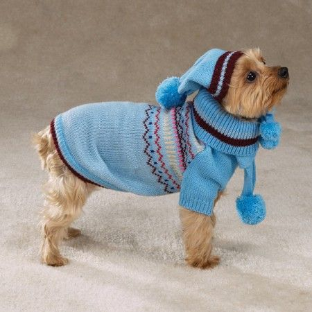 Small+Easy+Crochet+Dog+Sweater+Patterns | Crochet Dog ...