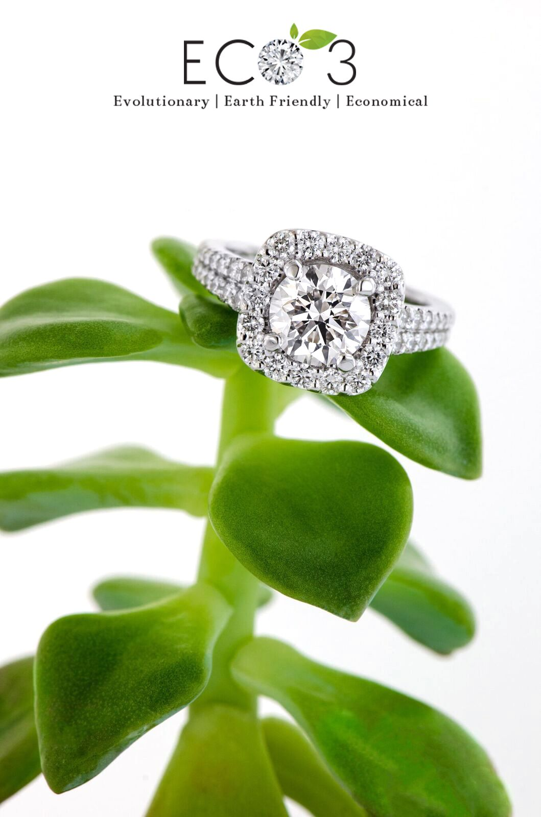 Curious about Lab Grown Diamonds? Read our latest blog