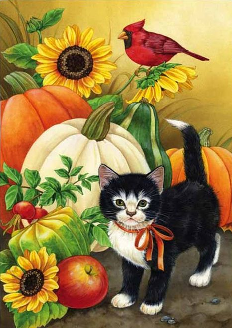 Decorative Garden Flags Yard Flags Mailbox Covers And Seasonal Decorations From Discount Decorative Flags Autumn Painting Fall House Flags Cat Art