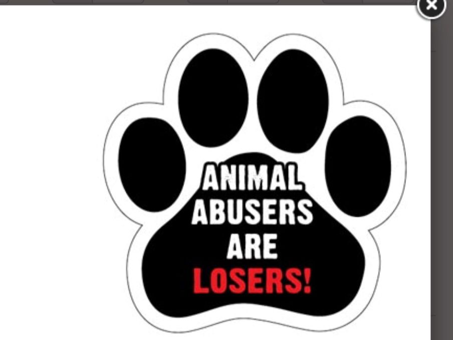 Paw Shape Car Magnet Animal Abusers Are Losers Paw Shape Car