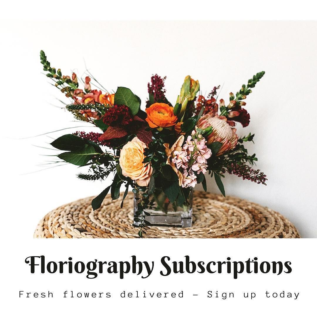We have big news today we are starting flower delivery we have big news today we are starting flower delivery subscriptions in the albuquerque area izmirmasajfo