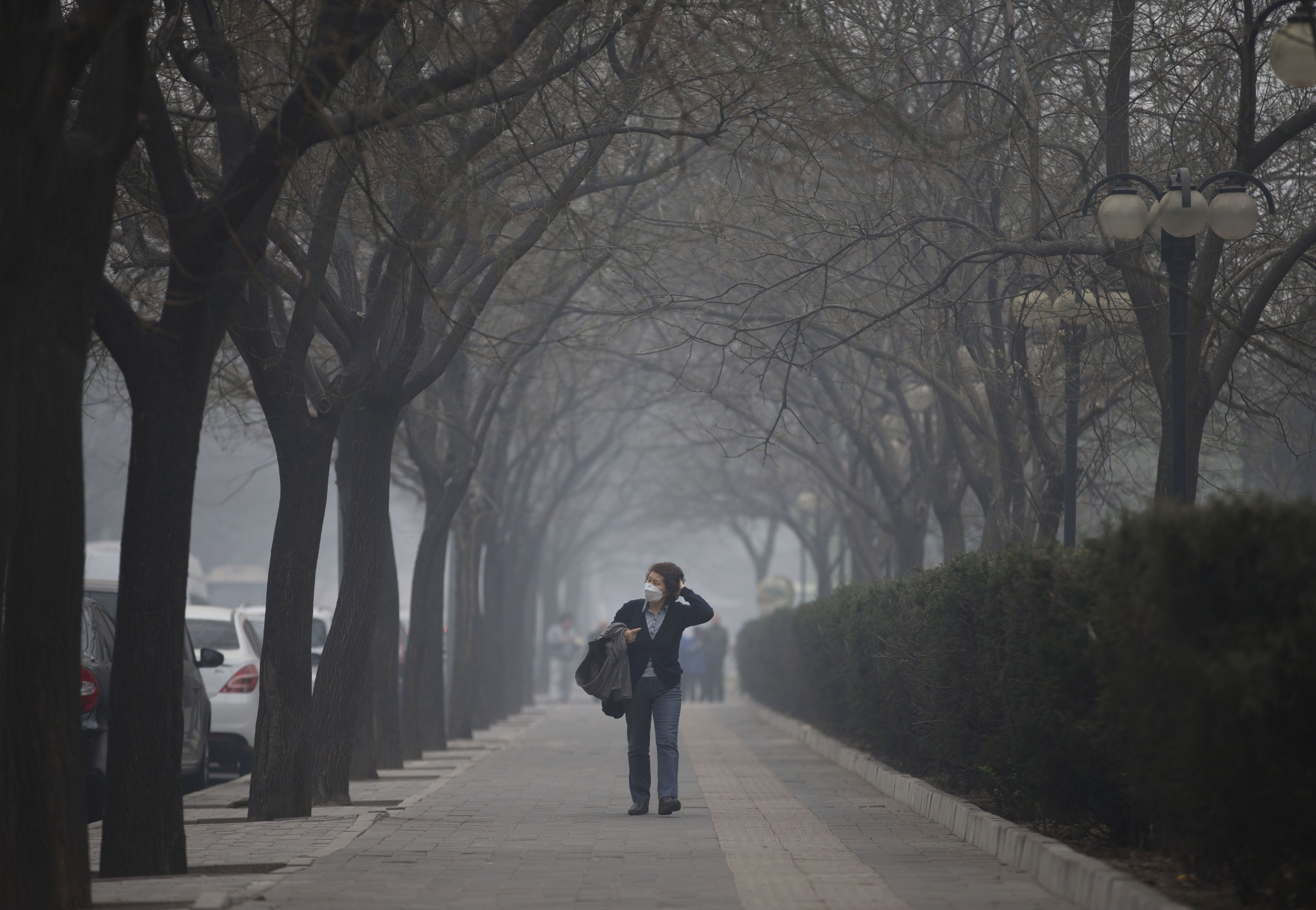 Newsela Antipollution protests in China Pollution
