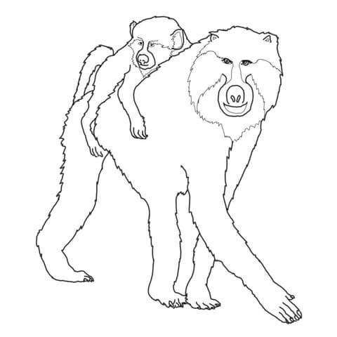 Madre Babuino con su Bebé Dibujo para colorear | animales in 2018 ...