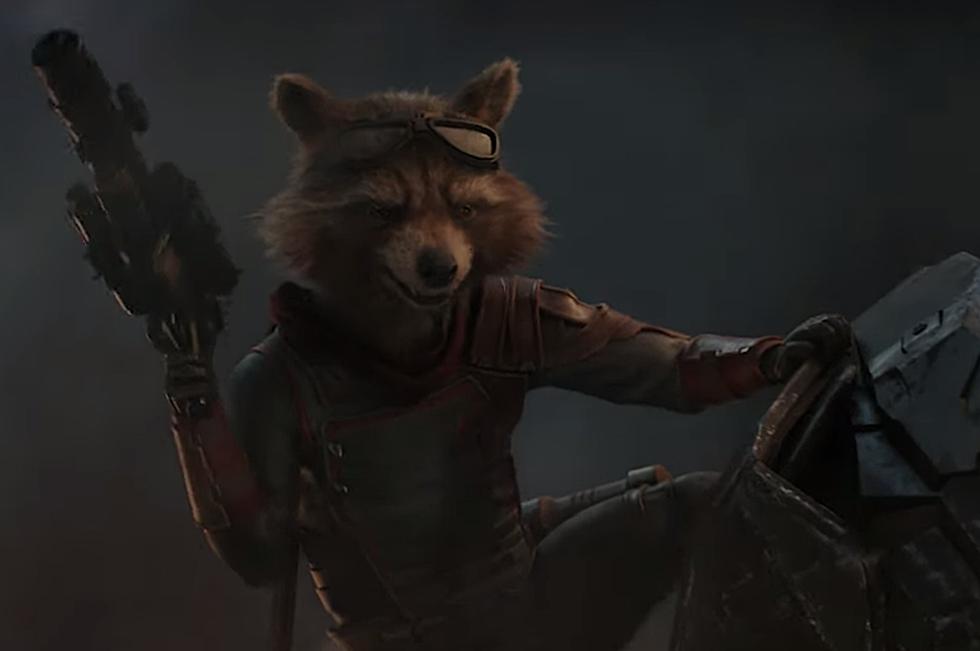 Endgame Google Search Rocket Raccoon Raccoon Art Gaurdians Of The Galaxy