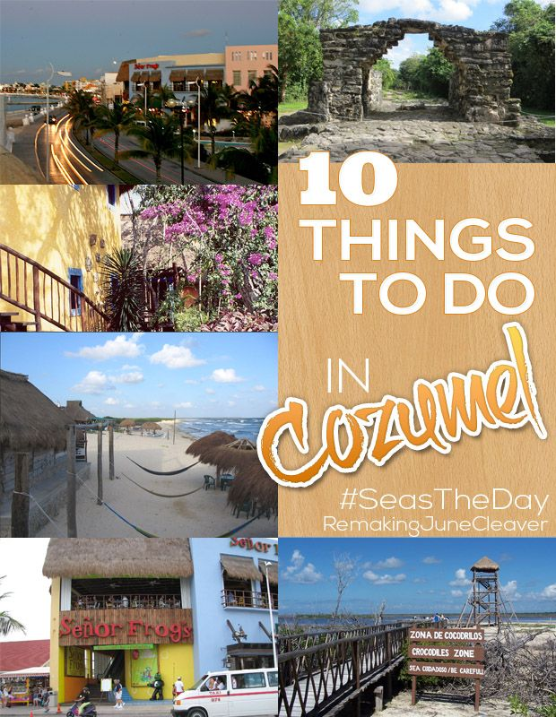 Things To Do In Cozumel Mexico Cruise Mexico Travel Cruise