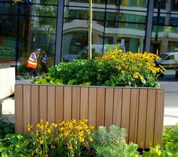 Hochbeet Fur Balkon Selber Bauen Holz Bepflanzen Blumen Margeriten