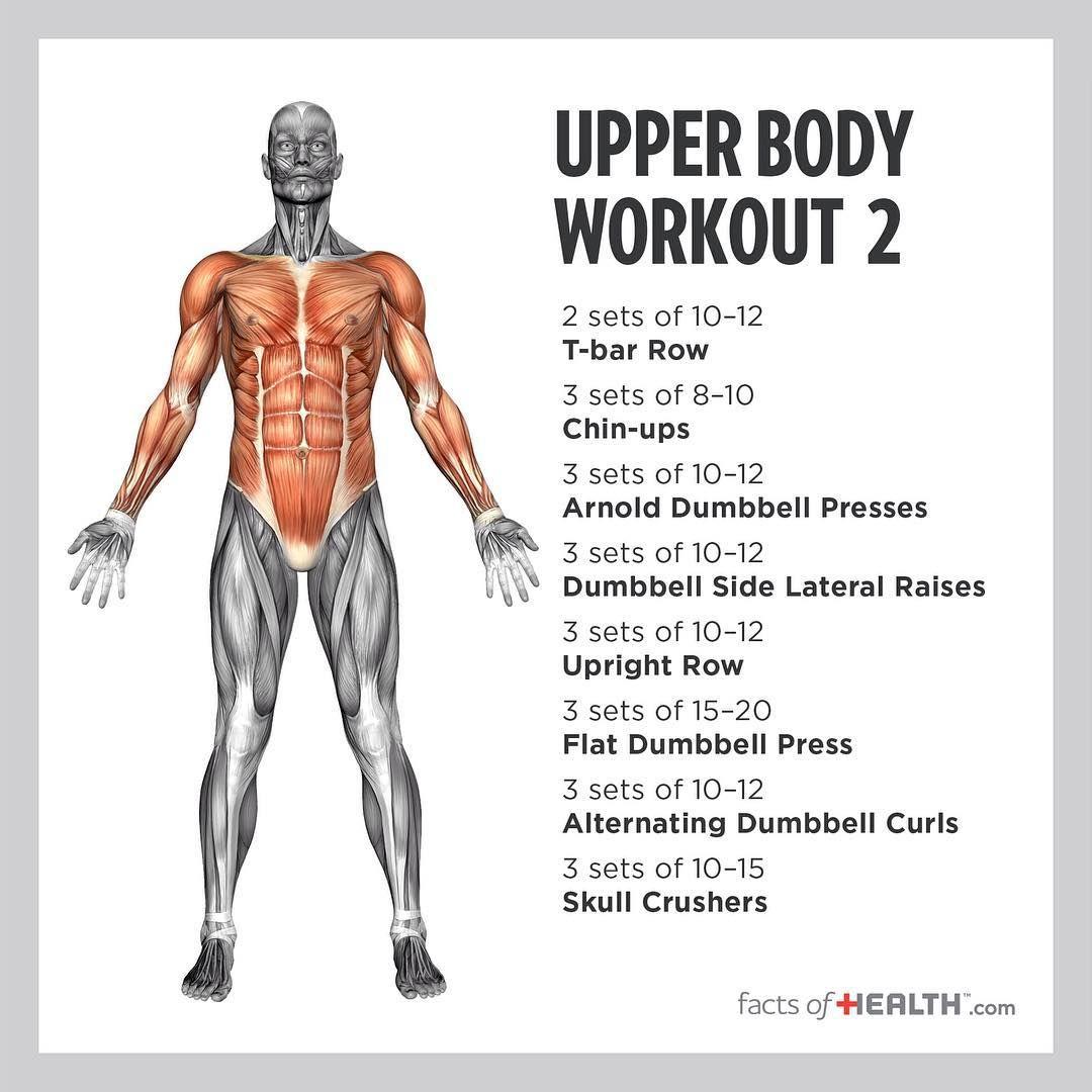 Instagram Photo By Fitness Inspiration Nov 17 2015 At 9 13pm Utc Fitness Body Upper Body Workout Fitness Training