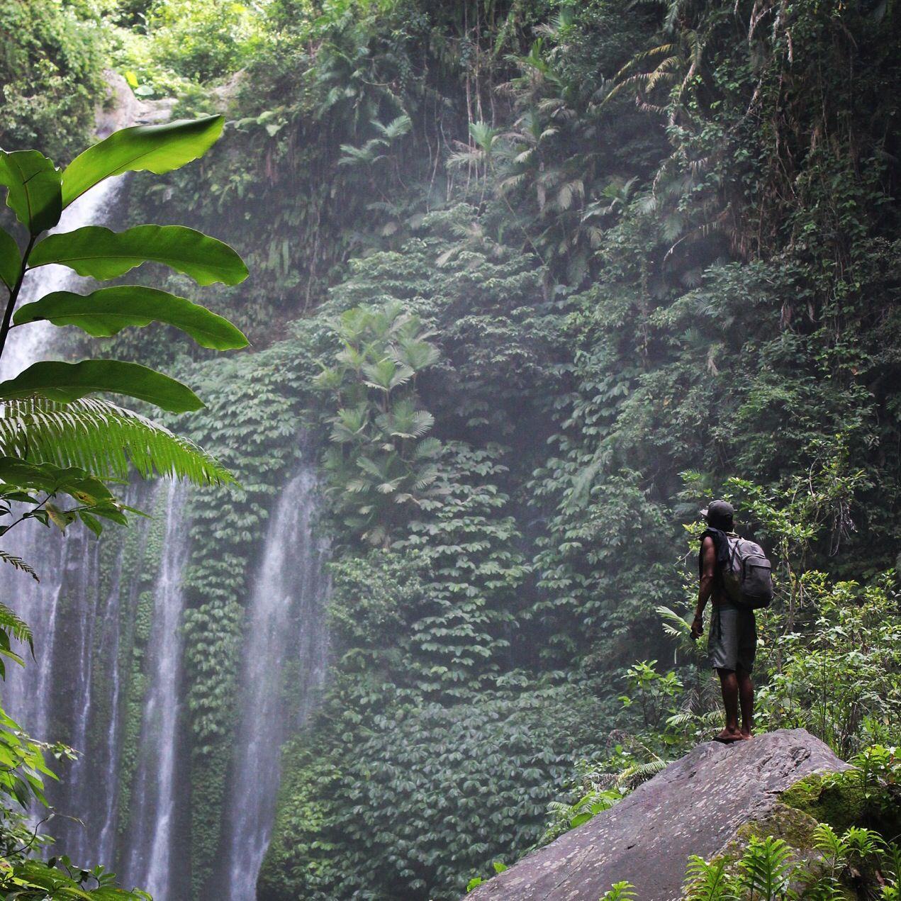 Lombok Waterfalls Www.naluasurf.com #surf #accommodation