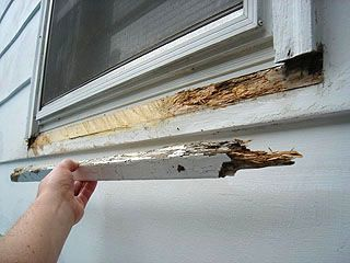 Fixing A Rotted Window Sill With Images Wood Repair Home Repairs Wood Window Sill
