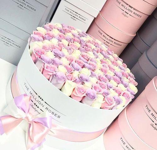 Imagen de flowers, roses, and pink
