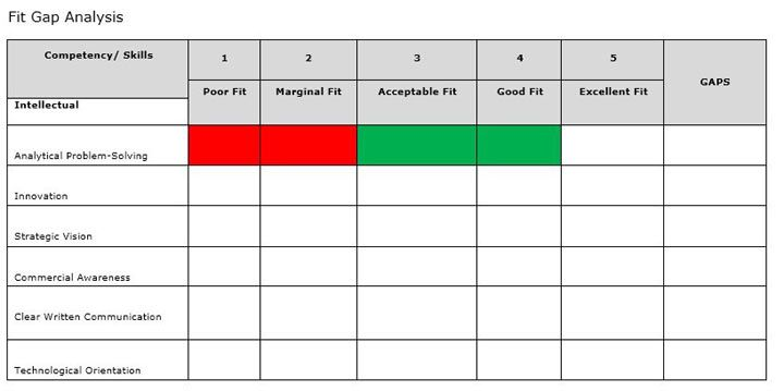10  fit gap analysis template excel  u2013 spreadsheet report