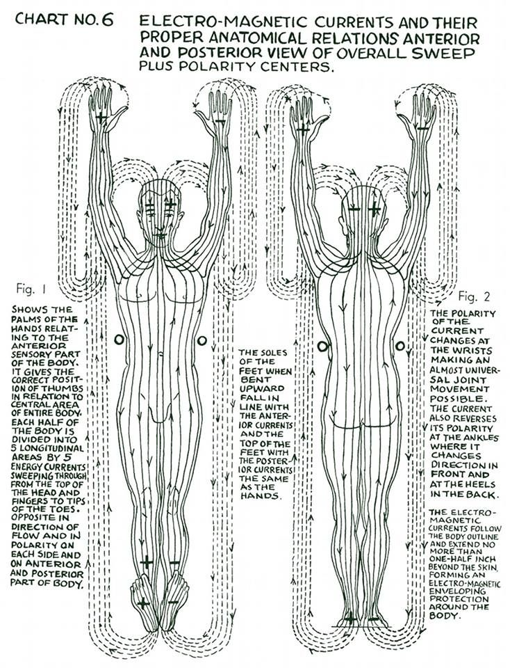 Polarity Therapy Chart | Treatment | Pinterest | Therapy, Chart and ...