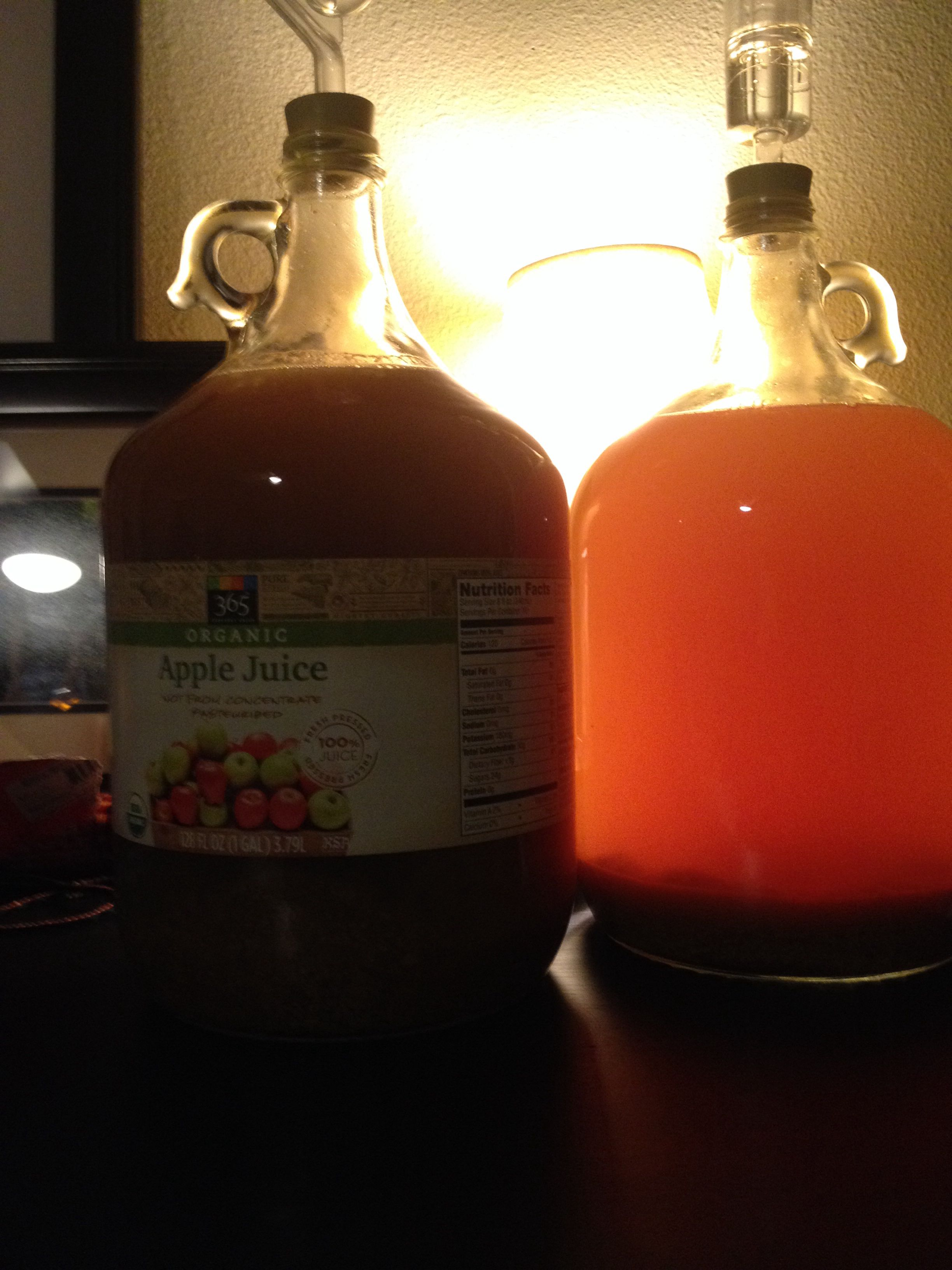 Pumpkin Pie Hard Cider Photo Is Day One Of Fermentation Organic Apple Juice From Whole Foods On The Left Winc Organic Apple Juice Flavored Beer Beer Brewing