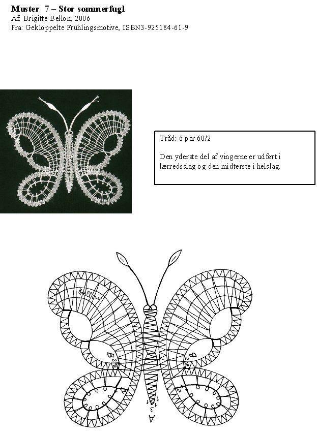 Mariposa y Patron chico
