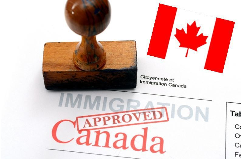 What's the Canada Immigration Policy for International Students