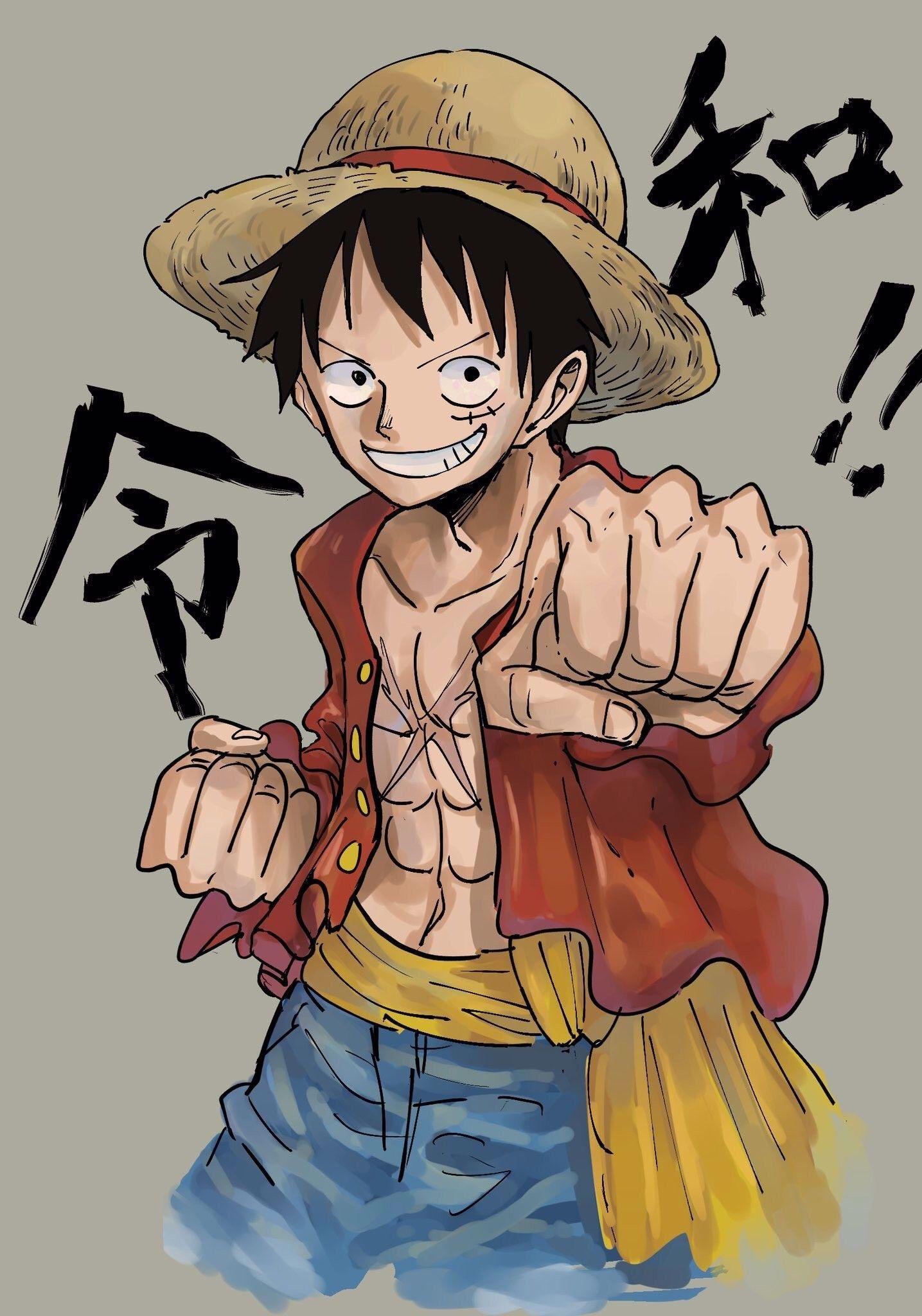 Pin Di Anime One Piece