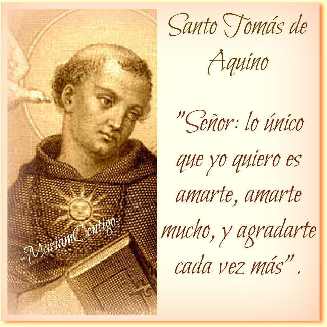 Santo Tomás De Aquino Tommaso Daquino Doctor Angélico