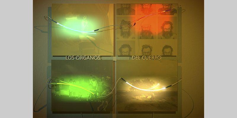 LOS ORGANOS DEL CUERPO. YENY CASANUEVA Y ALEJANDRO GONZALEZ. PROYECTO PROCESUAL ART.