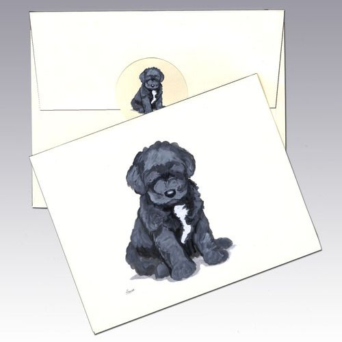 Portuguese Water Dog Note Cards