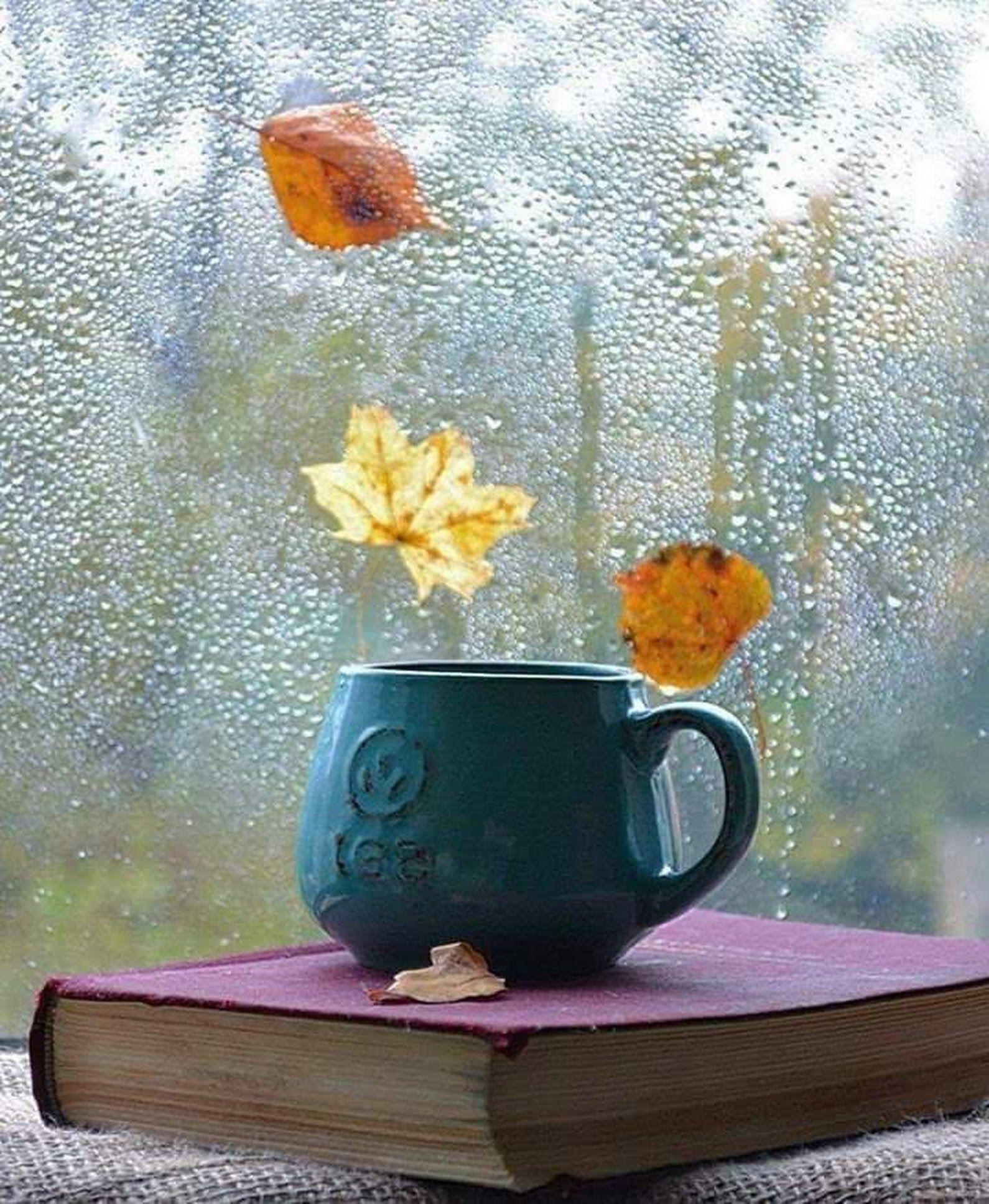осеннее дождливое утро картинки красивые с надписью