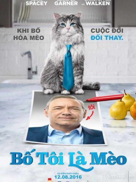 Bố Tôi Là Mèo - HD