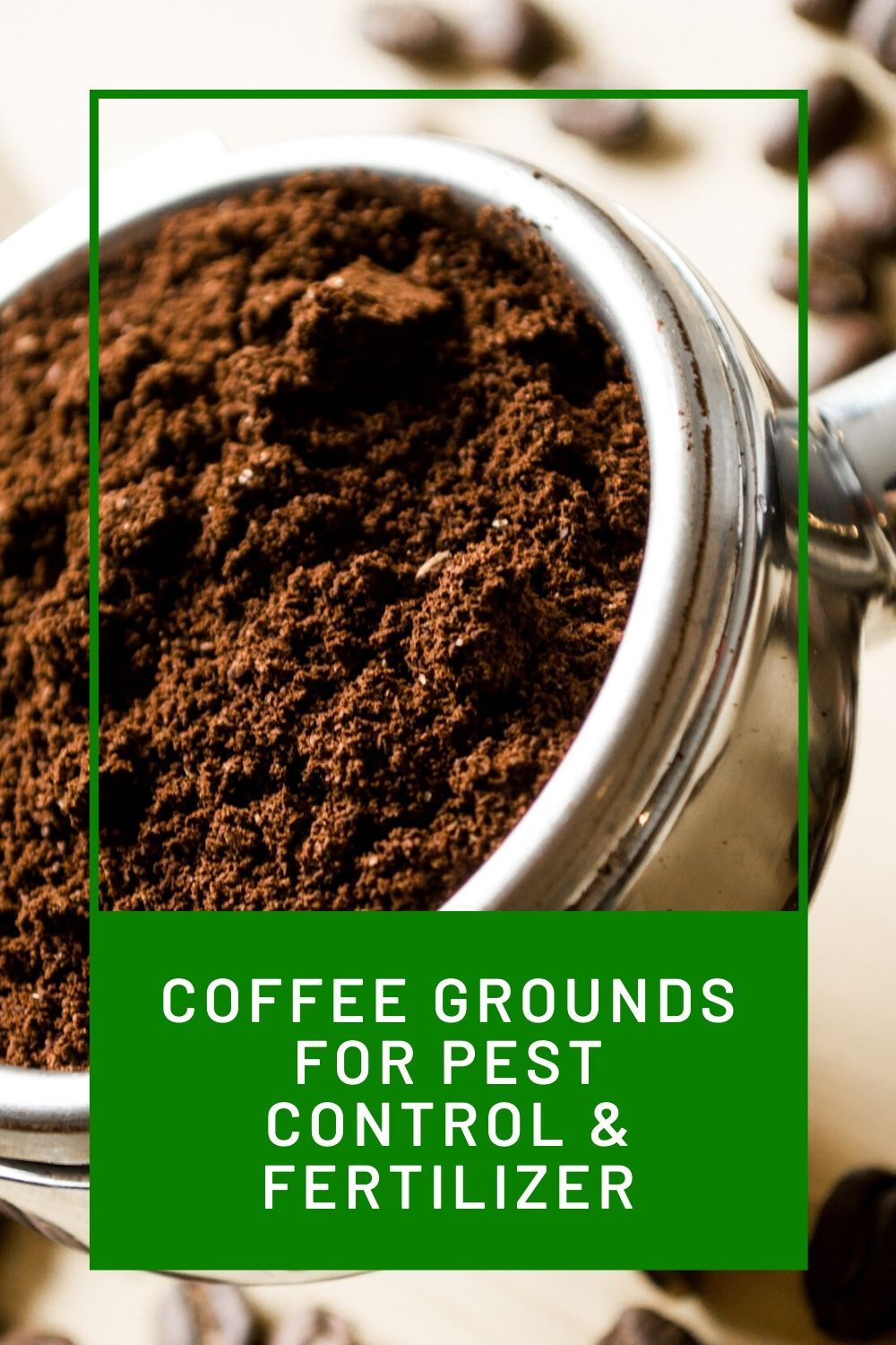 Are Coffee Grounds Good For Plants? Uses for coffee