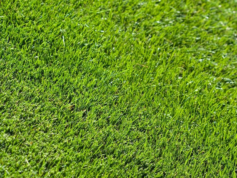 Lawn Doctor Bluegrass Grass Textures Artificial Lawn Artificial Grass