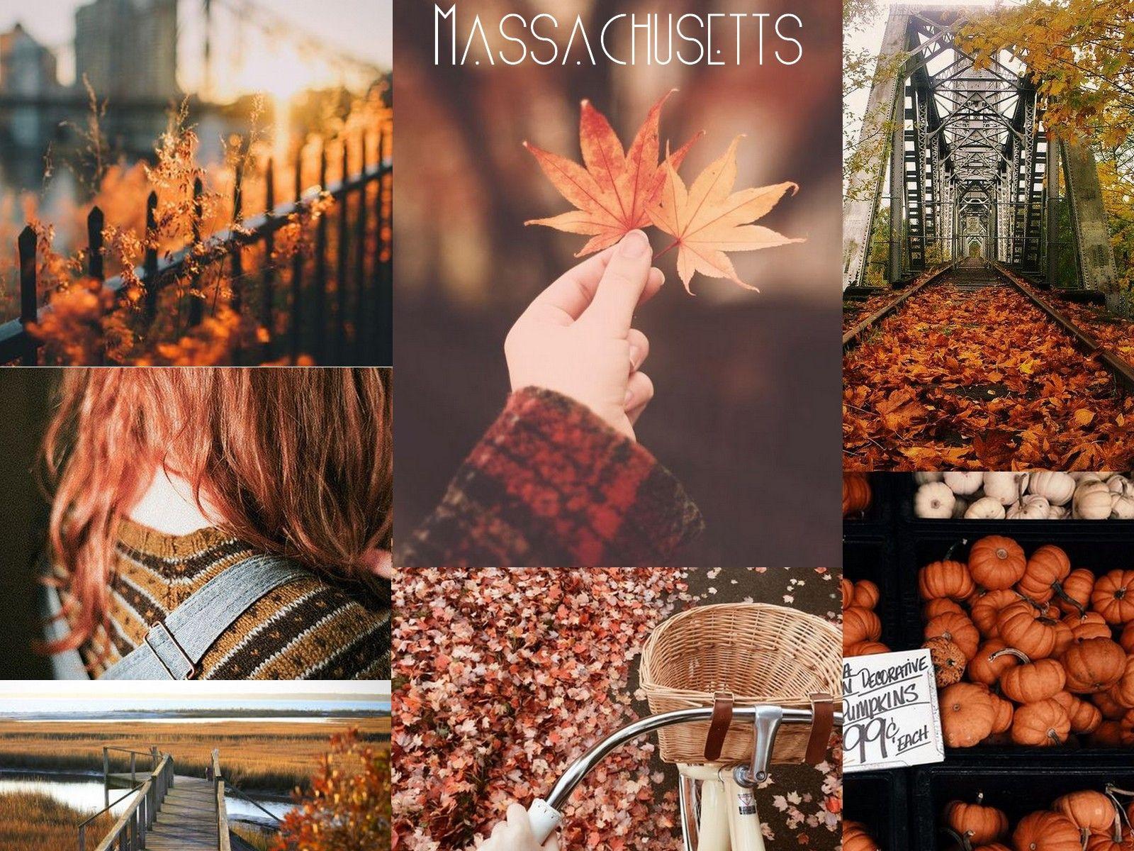 • MASSACHUSETTS • Aesthetic by Willow