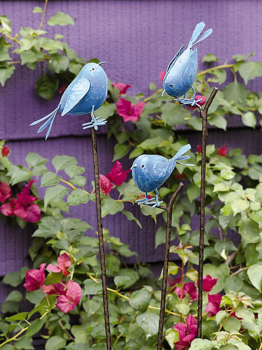 Songbird Stakes in blue or red. Painted metal with hand-distressed finish. Set of three birds, each sitting on a twig-like stake.  | Gardener's Supply
