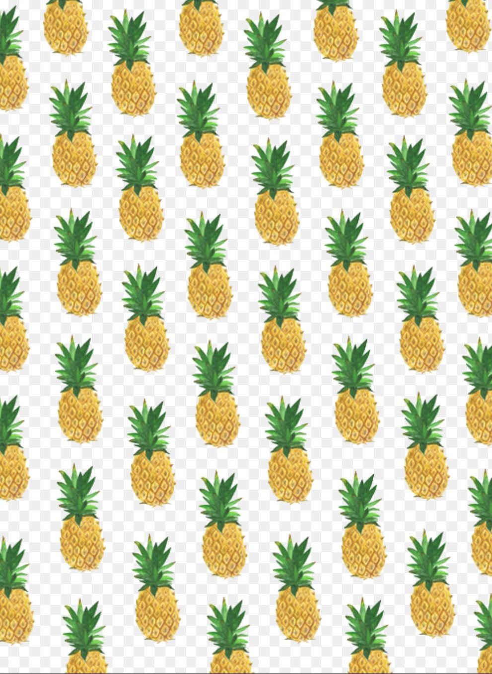 Top Wallpaper Home Screen Pineapple - 6ddc6da78b84aa33116dc7bb422c2708  Photograph_346493.jpg