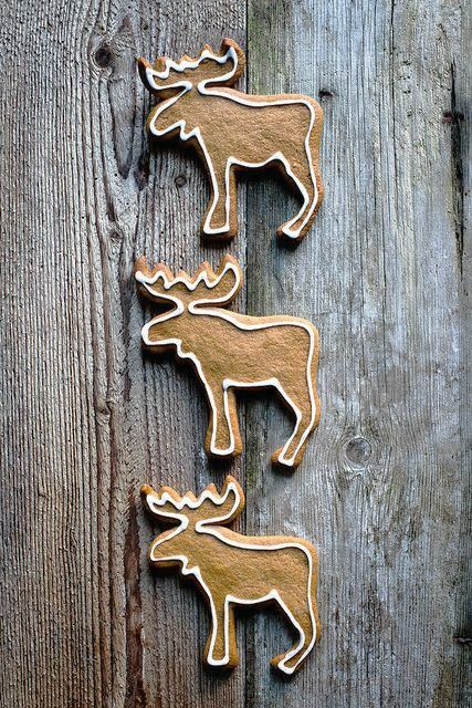 Gingerbread moose