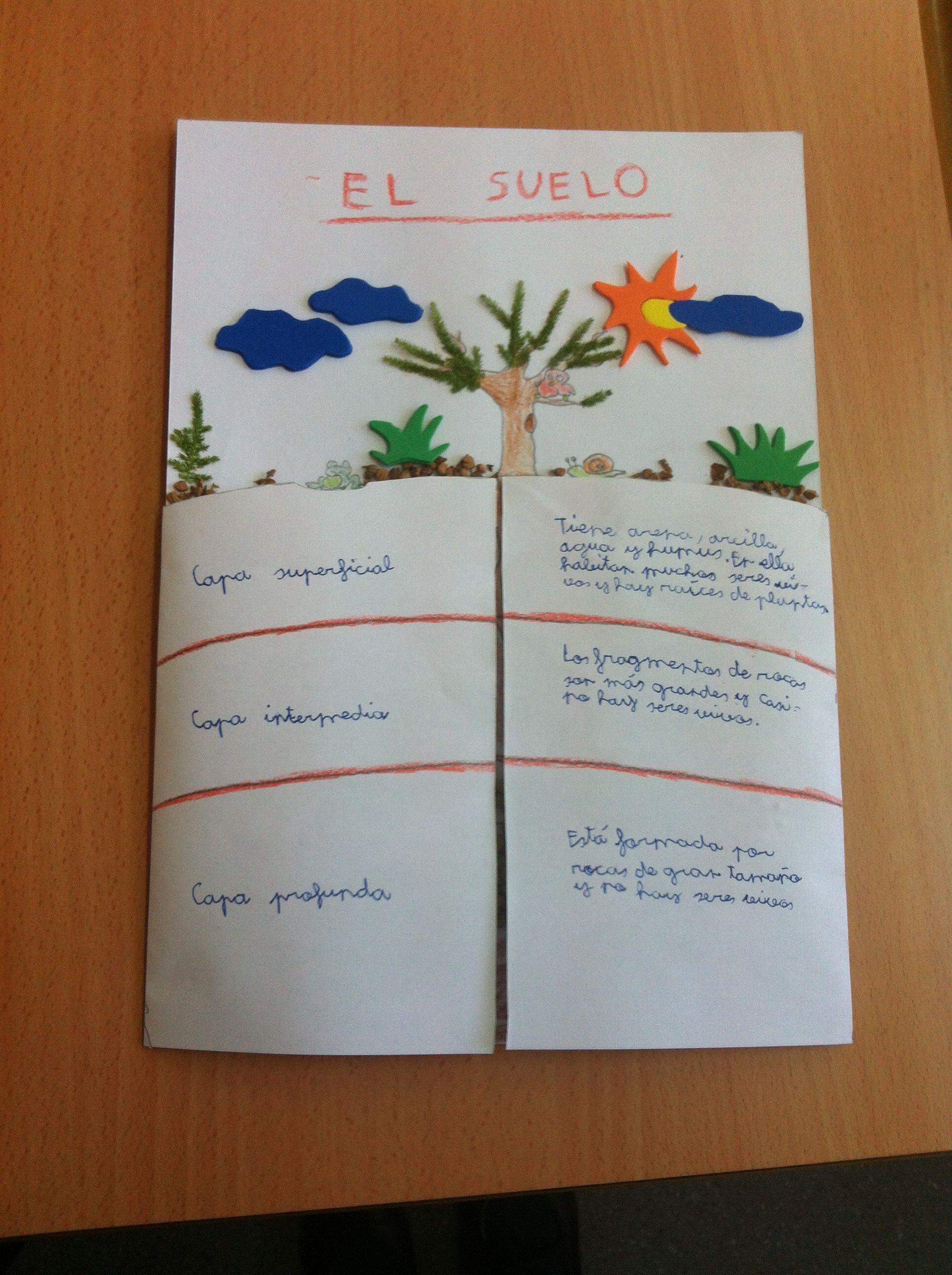 Capas Del Suelo Humus Teacher