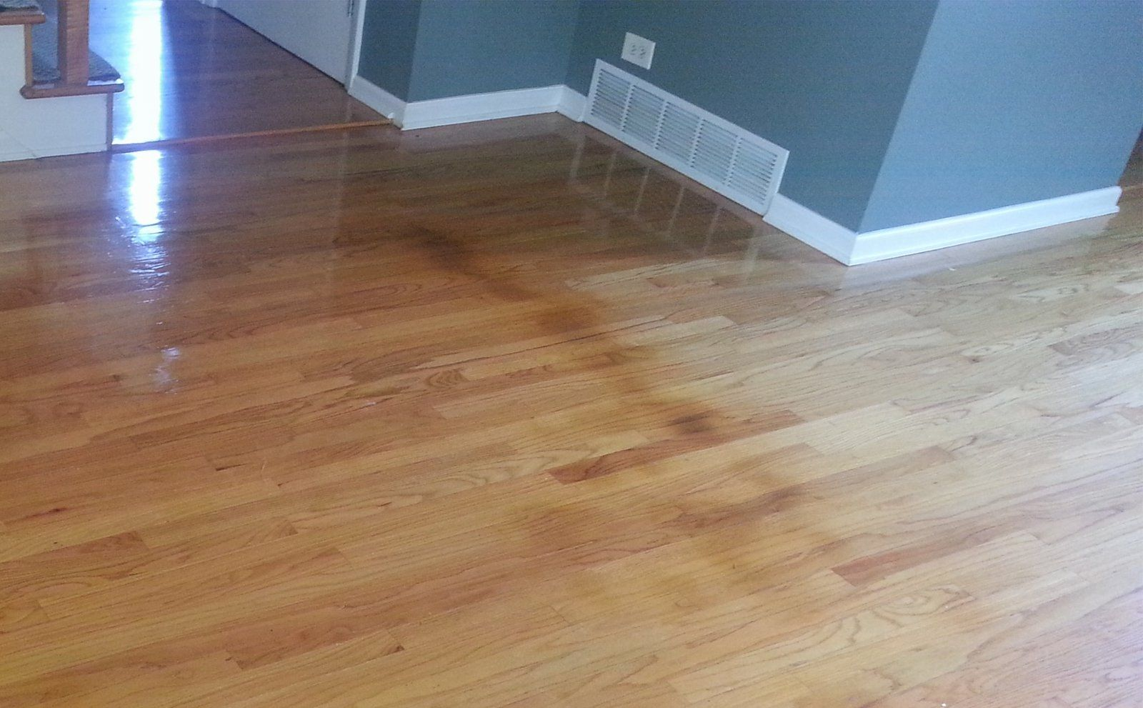 No Moisture Barrier Under Wood Floor