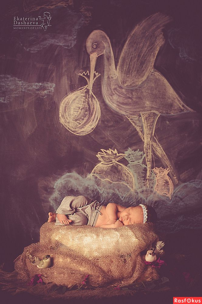 Ekaterina Dashayeva Photography | Детские фото, Фотографии ...