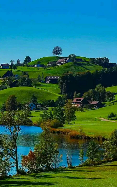 Холмы, перелески,поля...- завораживающая красота ландшафта ...