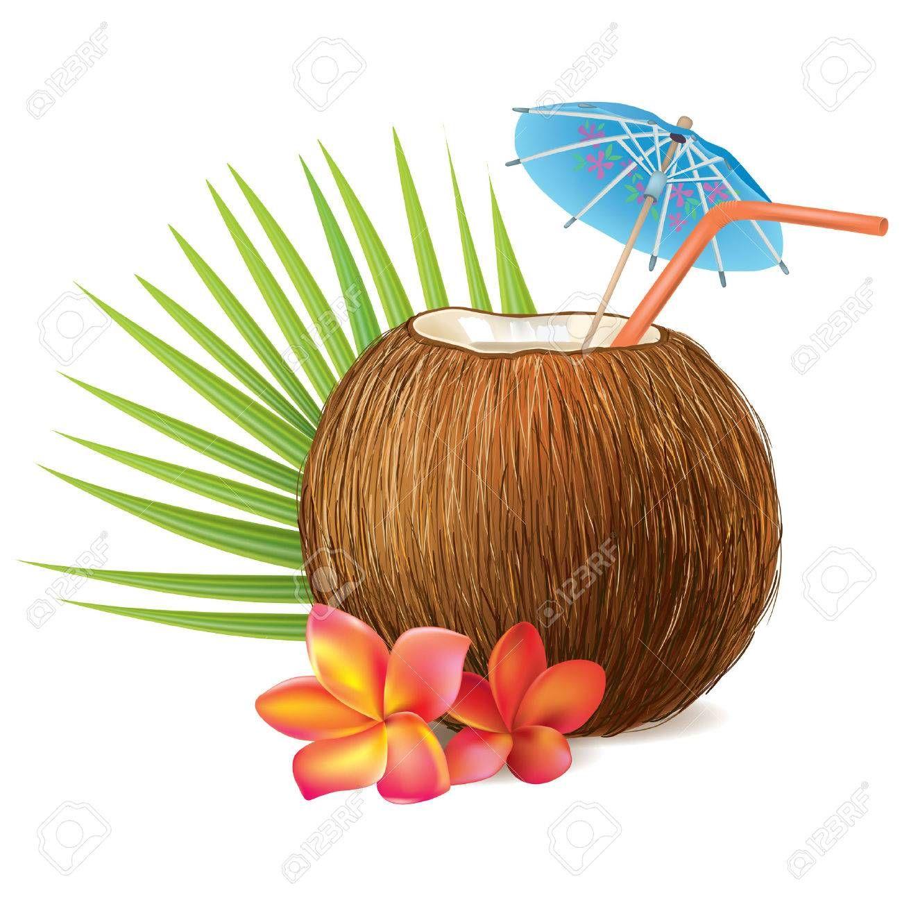 Imagen Relacionada Coconut Drinks Coconut Downloadable Art