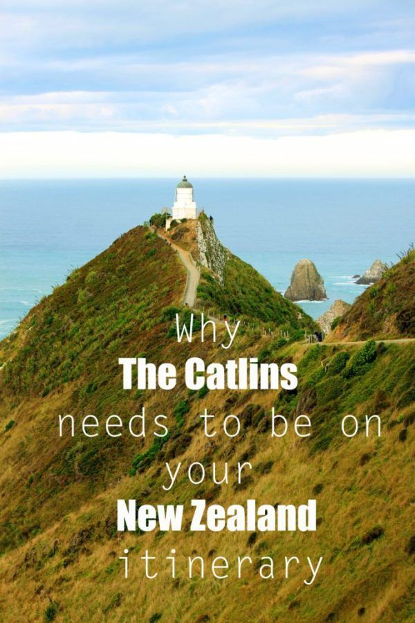 9 reasons why the Catlins needs to be on your New Zealand itinerary #newzealand #thecatlins #simplywander