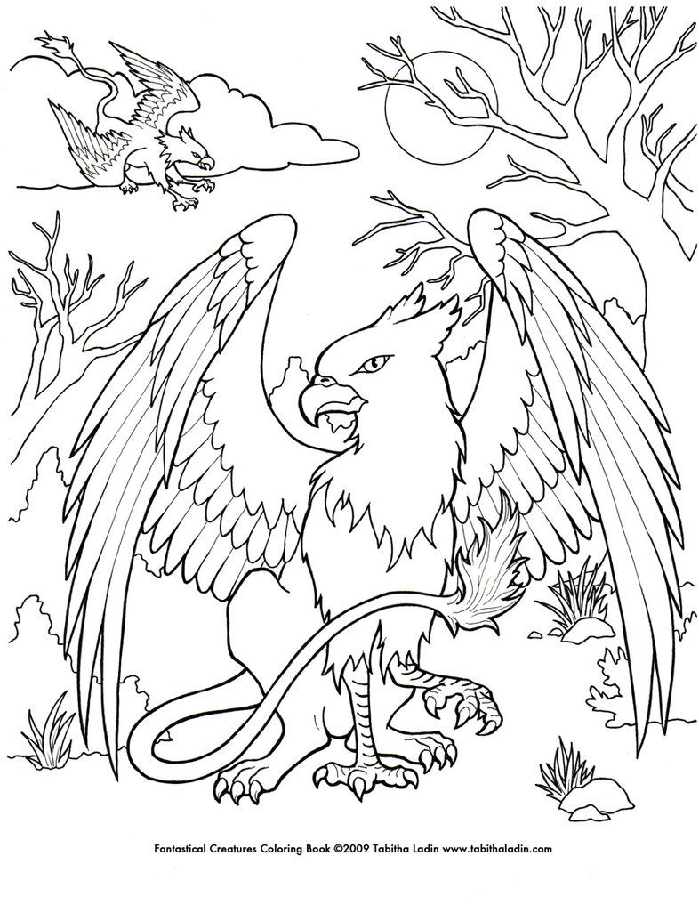A Page From My Fantastical Creatures Coloring Book Hand