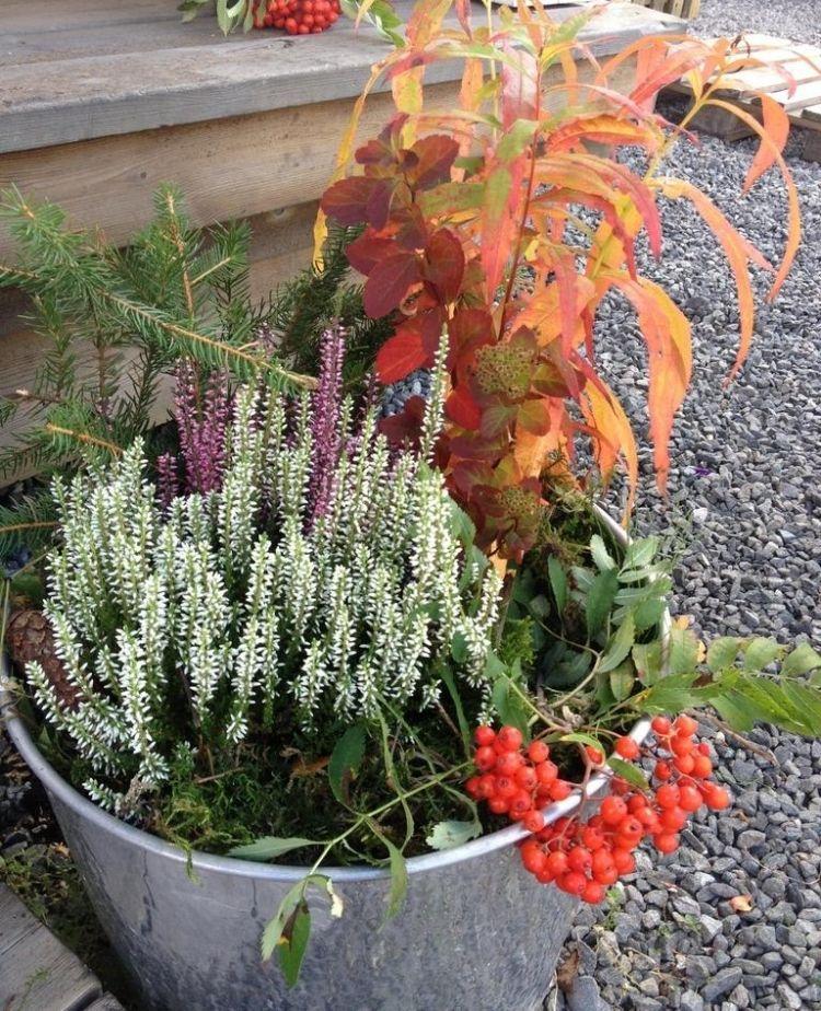 Herbstliche Deko Fur Draussen Garten Und Terrasse Verzieren Dekoration Gram Decoration Jardin Plantes D Automne Jardins