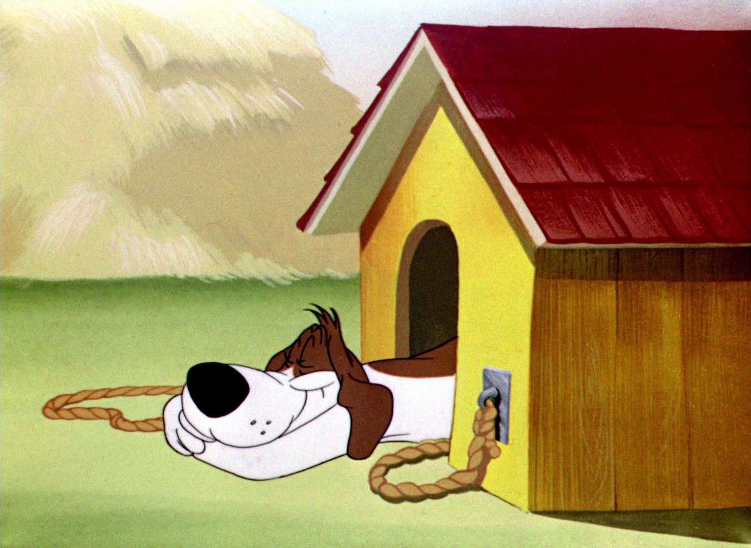 Dog Hen And Looney Toons House