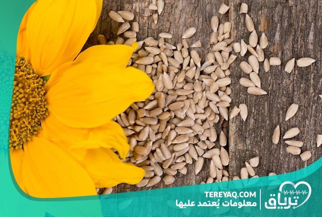 فوائد لب عباد الشمس للحامل القيمة الغذائية والفوائد العلاجية Sunflower Seeds Benefits Keto Diet Snacks Healthy Vegan Snacks