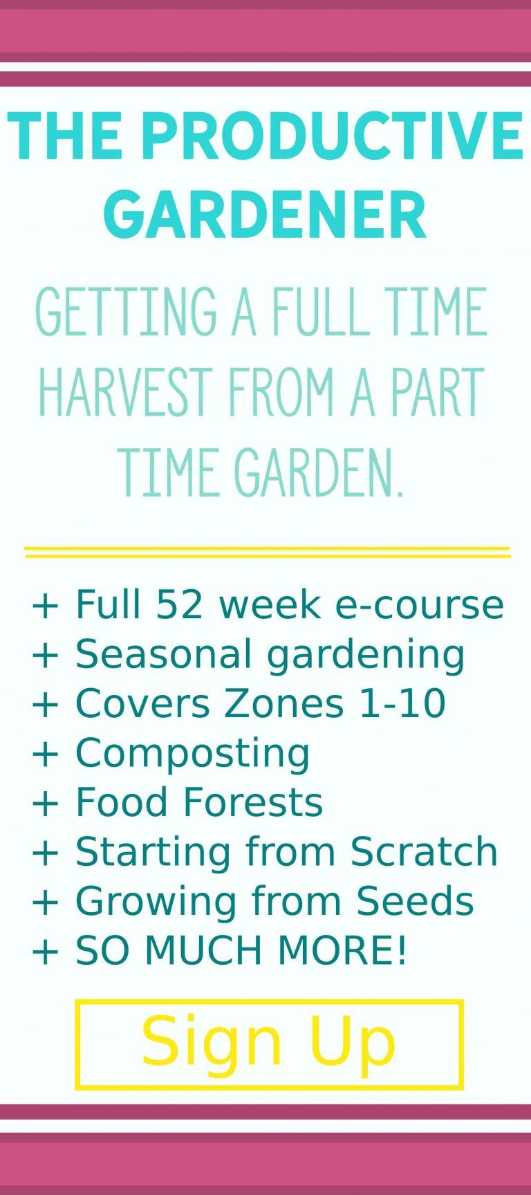 Learn To Grow A Productive Garden Beginner Gardening Course