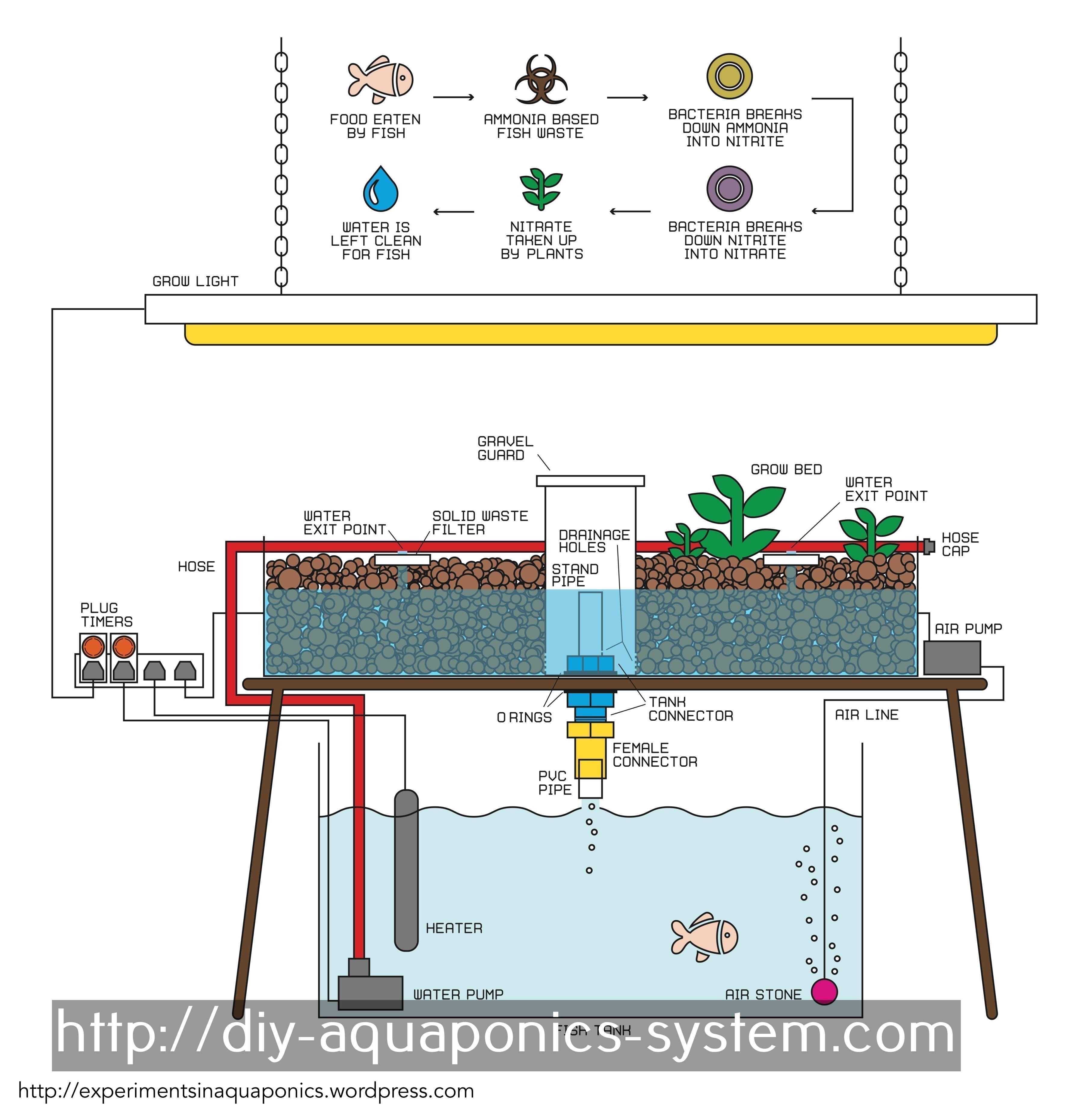 Diy Hydroponic System Pdf - Garden Design Ideas